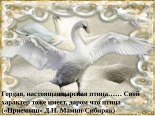 Гордая, настоящая царская птица…… Свой характер тоже имеет, даром что птица (