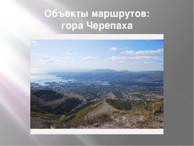Объекты маршрутов: гора Черепаха