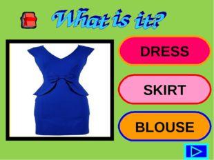 DRESS SKIRT BLOUSE