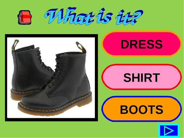 DRESS SHIRT BOOTS