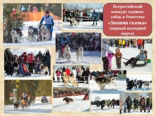 Всероссийский конкурс ездовых собак в Решетихе «Зимняя сказка» (первый выходн