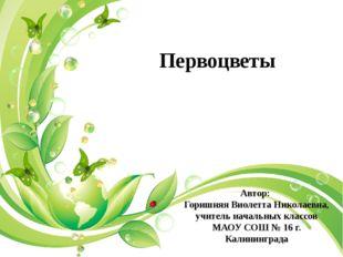Автор: Горишняя Виолетта Николаевна, учитель начальных классов МАОУ СОШ № 16