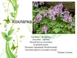 Хохлатка Хохлатка – не птичка, Хохлатка – цветок, Весной весь в хохлатках За