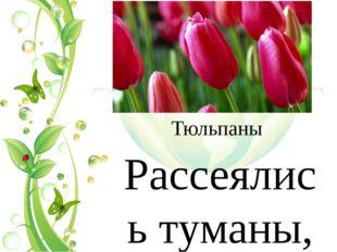Тюльпаны Рассеялись туманы, Растаяла зима. И расцвели тюльпаны – В наш дом пр