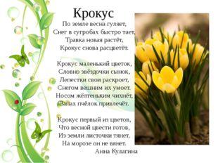 Крокус По земле весна гуляет, Снег в сугробах быстро тает, Травка новая растё