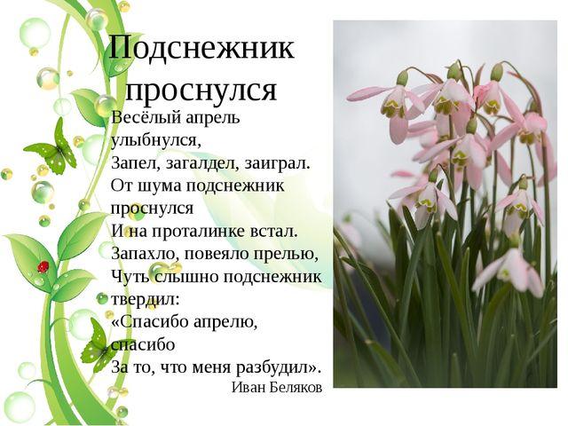 Подснежник проснулся Весёлый апрель улыбнулся, Запел, загалдел, заиграл. От ш...