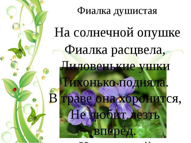 Фиалка душистая На солнечной опушке Фиалка расцвела, Лиловенькие ушки Тихонь...