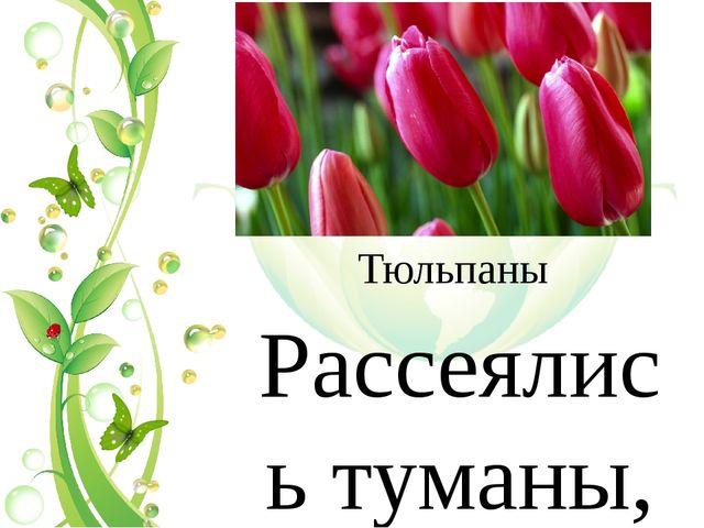 Тюльпаны Рассеялись туманы, Растаяла зима. И расцвели тюльпаны – В наш дом пр...