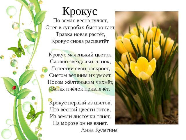 Крокус По земле весна гуляет, Снег в сугробах быстро тает, Травка новая растё...