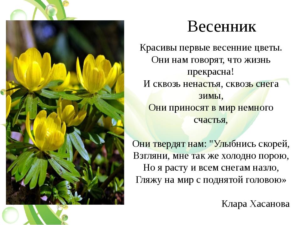 Весенник Красивы первые весенние цветы. Они нам говорят, что жизнь прекрасна!...
