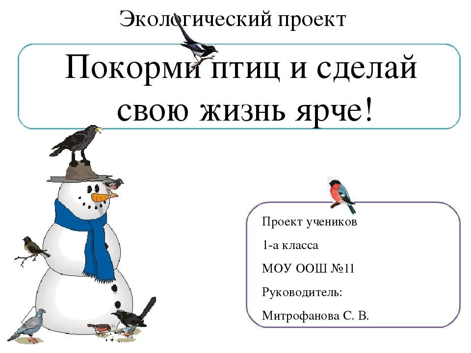 Экологический проект Покорми птиц и сделай свою жизнь ярче! Проект учеников...