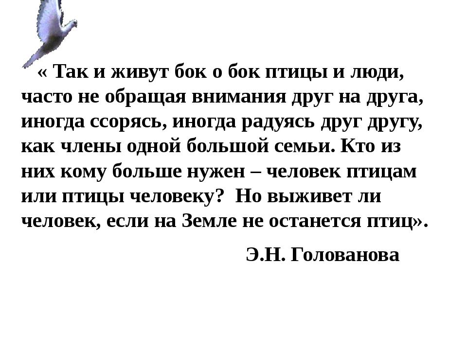 « Так и живут бок о бок птицы и люди, часто не обращая внимания друг на друг...