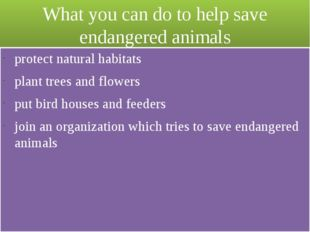 What you can do to help save endangered animals protect natural habitats plan
