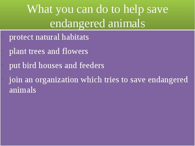 What you can do to help save endangered animals protect natural habitats plan...