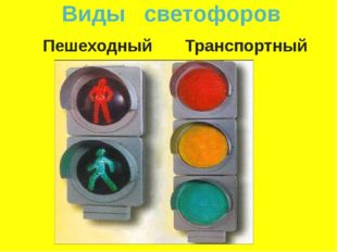 Виды светофоров Пешеходный Транспортный