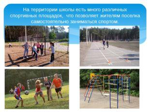 На территории школы есть много различных спортивных площадок, что позволяет ж