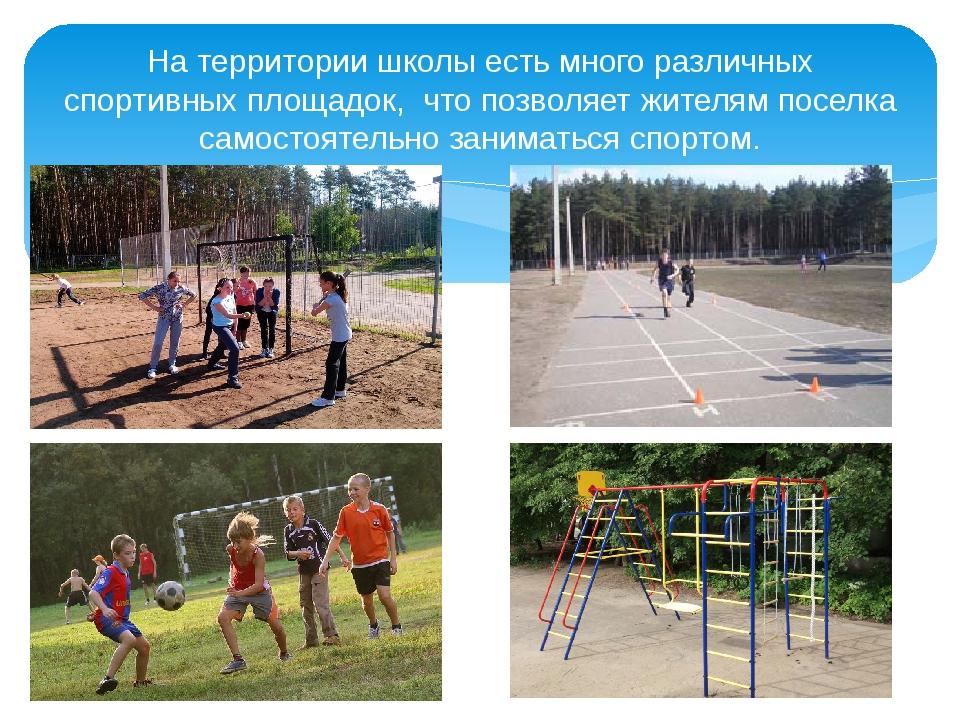 На территории школы есть много различных спортивных площадок, что позволяет ж...