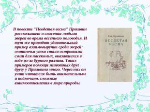 """В повести """"Неодетая весна"""" Пришвин рассказывает о спасении людьми зверей во"""