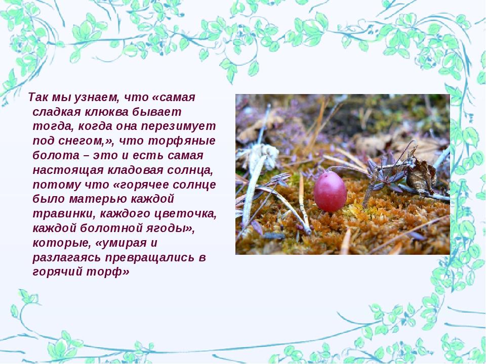 Так мы узнаем, что «самая сладкая клюква бывает тогда, когда она перезимует...