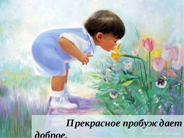 Прекрасное пробуждает доброе. Д. Кабалевский