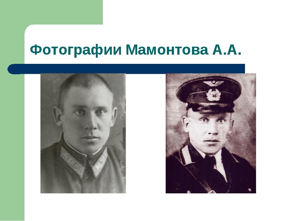 Фотографии Мамонтова А.А.