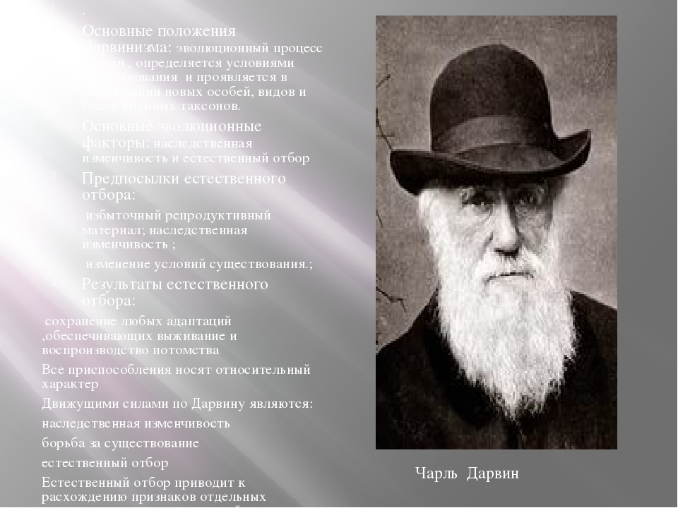 . Основные положения Дарвинизма: эволюционный процесс реален , определяется...