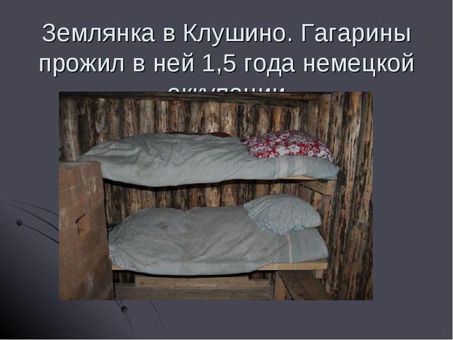 Землянка в Клушино. Гагарины прожил в ней 1,5 года немецкой оккупации