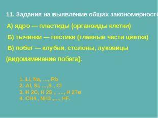 11. Задания на выявление общих закономерностей А) ядро — пластиды (органоиды