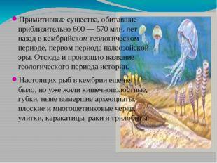 Примитивные существа, обитавшие приблизительно 600 — 570 млн. лет назад в кем