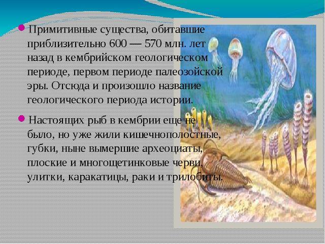 Примитивные существа, обитавшие приблизительно 600 — 570 млн. лет назад в кем...