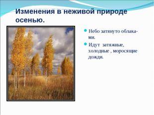 Изменения в неживой природе осенью. Небо затянуто облака-ми. Идут затяжные, х