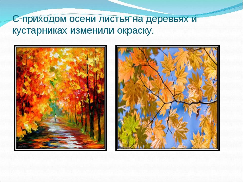 тороидального трансформатора как окрашиваются листья деревьев осенью Новосибирская область, Города