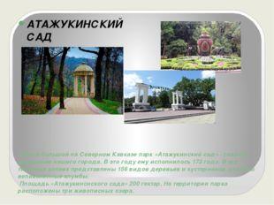 Самый большой на Северном Кавказе парк «Атажукинский сад» - главное украшение