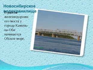 Новосибирское водохранилище В районе железнодорожного моста у города Камень-н