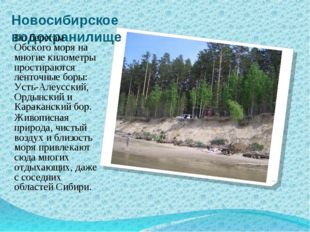 Новосибирское водохранилище По берегам Обского моря на многие километры прост