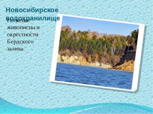 Новосибирское водохранилище Не менее живописны и окрестности Бердского залива.