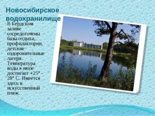 Новосибирское водохранилище В Бердском заливе сосредоточены базы отдыха, проф