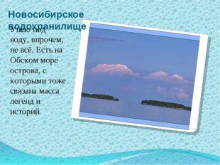 Новосибирское водохранилище Ушло под воду, впрочем, не всё. Есть на Обском мо
