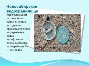 Новосибирское водохранилище На Миловановском острове были найдены редкие нахо