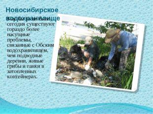 Новосибирское водохранилище Как бы то ни было, сегодня существуют гораздо бол