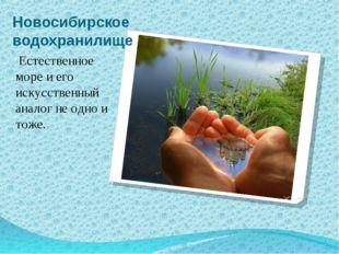 Новосибирское водохранилище Естественное море и его искусственный аналог не о