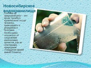 Новосибирское водохранилище Плотина на природной реке – это вроде тромба в кр