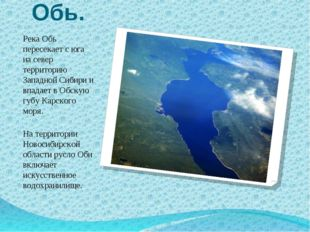 Обь. Река Обь пересекает с юга на север территорию Западной Сибири и впадает