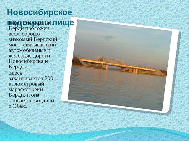 Новосибирское водохранилище Над устьем реки Берди проложен всем хорошо знаком...