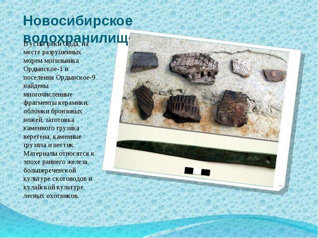 Новосибирское водохранилище В устье реки Орда, на месте разрушенных морем мог...