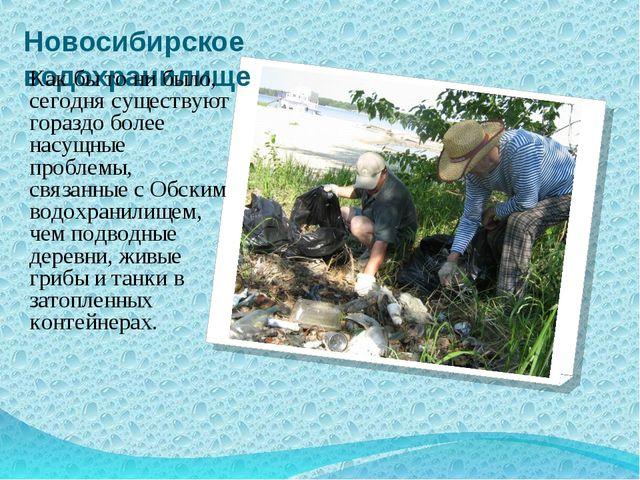 Новосибирское водохранилище Как бы то ни было, сегодня существуют гораздо бол...