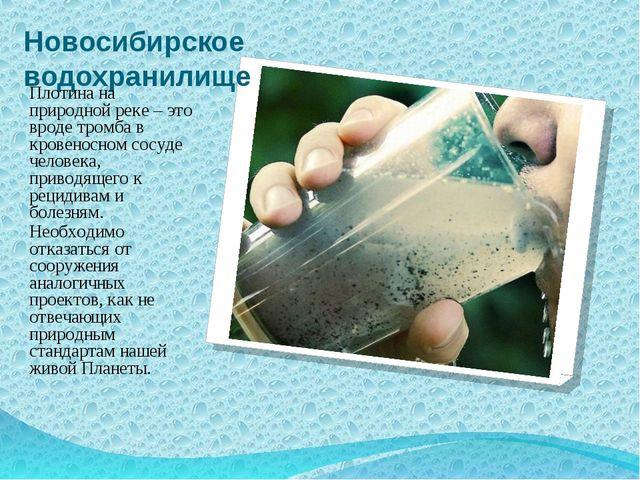 Новосибирское водохранилище Плотина на природной реке – это вроде тромба в кр...