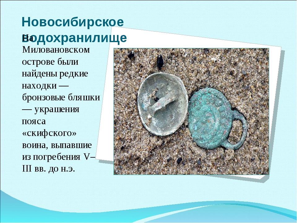 Новосибирское водохранилище На Миловановском острове были найдены редкие нахо...