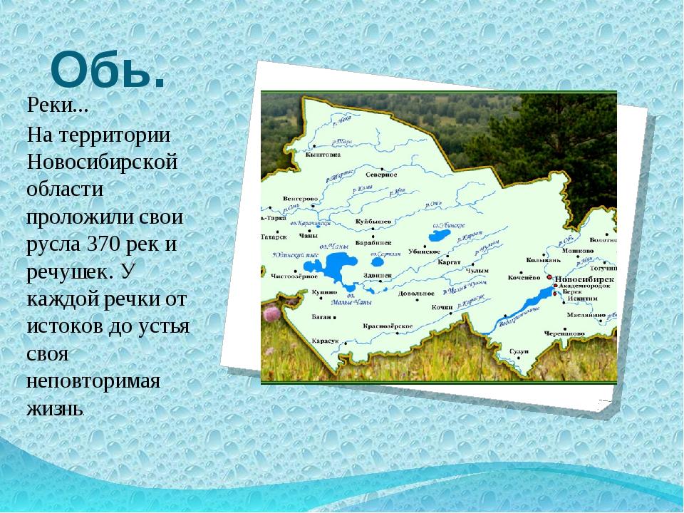 Обь. Реки... На территории Новосибирской области проложили свои русла 370 рек...