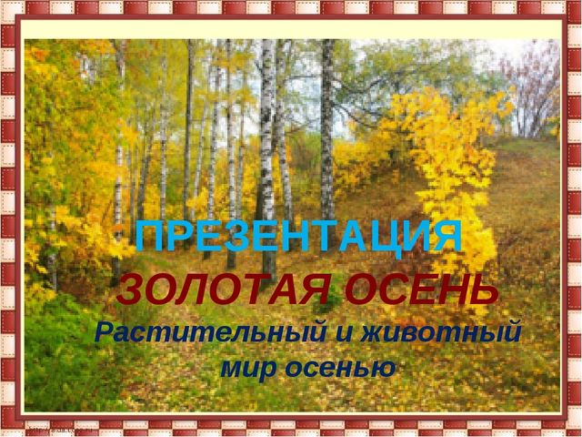 ЗОЛОТАЯ ОСЕНЬ Растительный и животный мир осенью ПРЕЗЕНТАЦИЯ